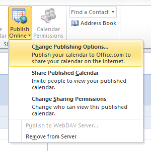 Office 2010 Calendar Share